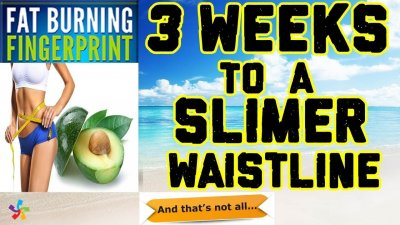 Fat Burning Fingerprint Weight Loss Program By Gary Watson
